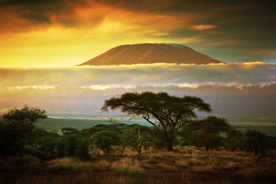Shutterstock.com nuotr./Kilimandžaras