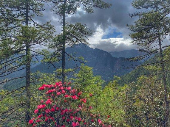 G.Grabažiūtės nuotr./Kelionė Butane