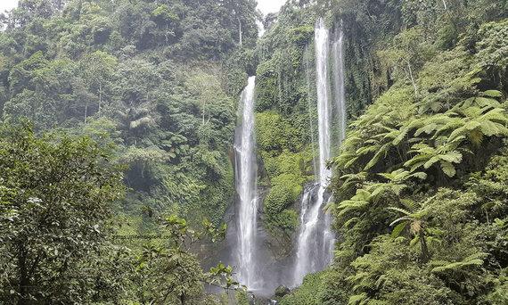 V.Panovaitės nuotr./Balio gamta