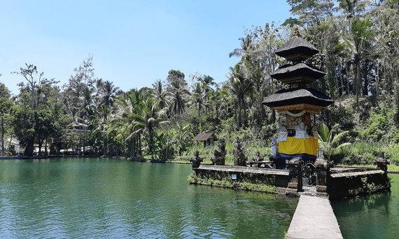 V.Panovaitės nuotr./Balis