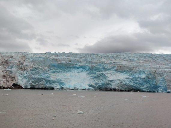 Asm.archyvo nuotr./Norndenskioldo ledynas