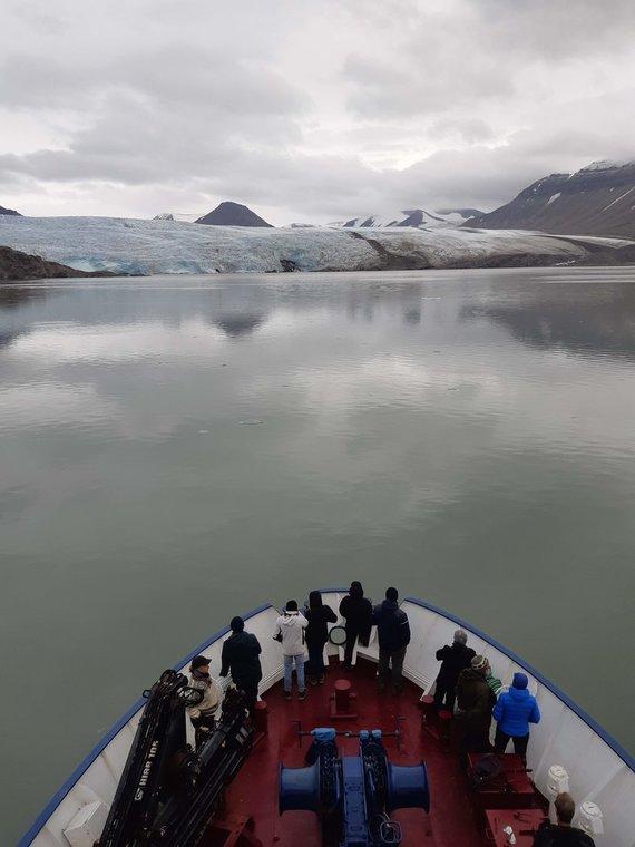 Asm.archyvo nuotr./Nordenskiold ledynas