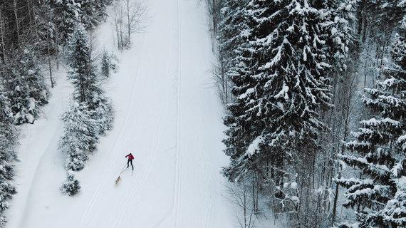 123rf.com nuotr./Lygumų slidinėjimas