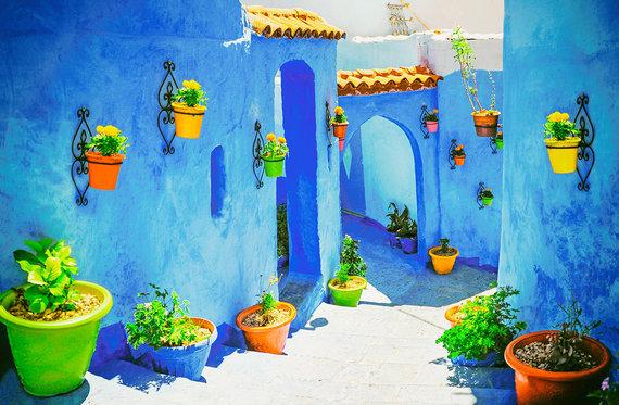 Shutterstock.com nuotr./Marokas