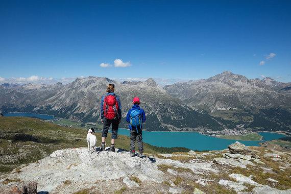 Shutterstock.com nuotr./Šveicarijos Alpės
