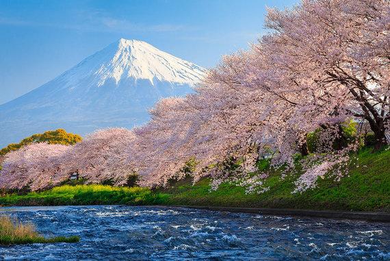 Shutterstock.com nuotr./Fudži kalnas