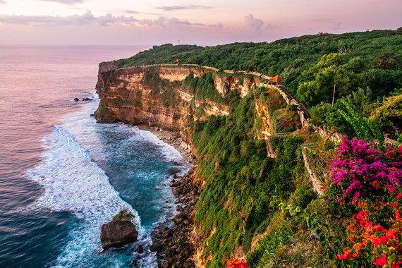 Shutterstock.com nuotr./Balis