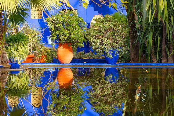Shutterstock.com nuotr./Marakešo botanikos sodas