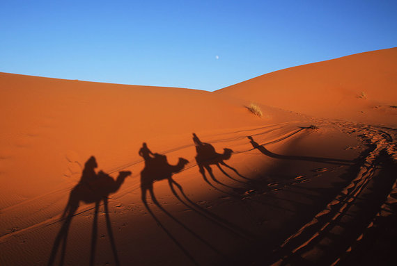 Shutterstock.com nuotr./Sacharos dykuma