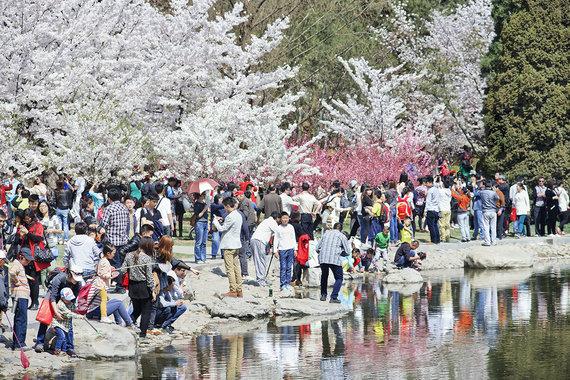 Shutterstock.com nuotr./6. Pekinas, Kinija