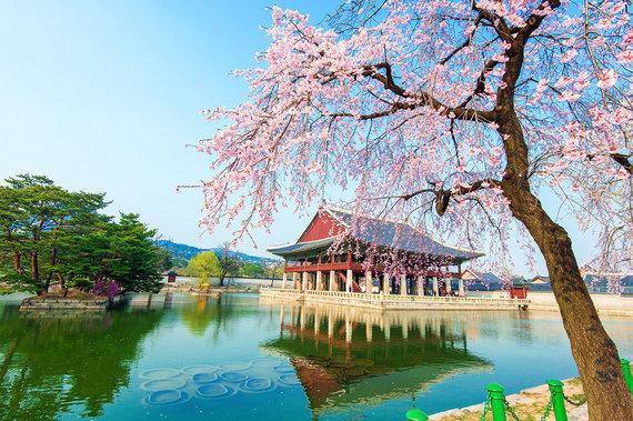 Shutterstock.com nuotr./2. Seulas, Pietų Korėja