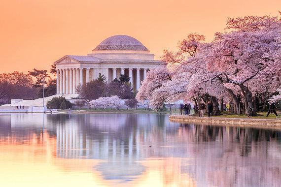 Shutterstock.com nuotr./7. Vašingtonas, JAV