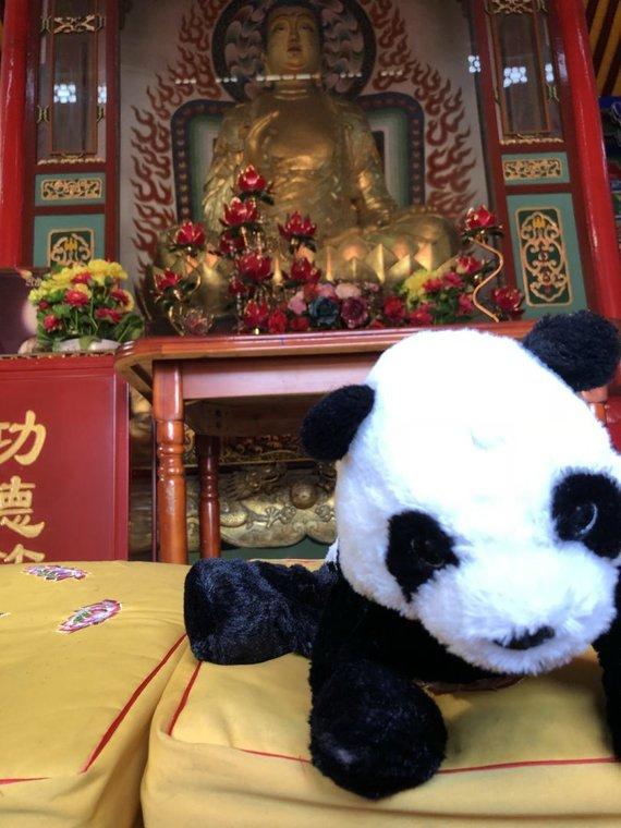 K.Ašmonaičio nuotr./Kelionė Kinijoje