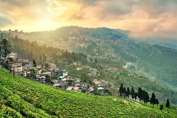 Shutterstock.com nuotr./1. Dardžilingas, Indija