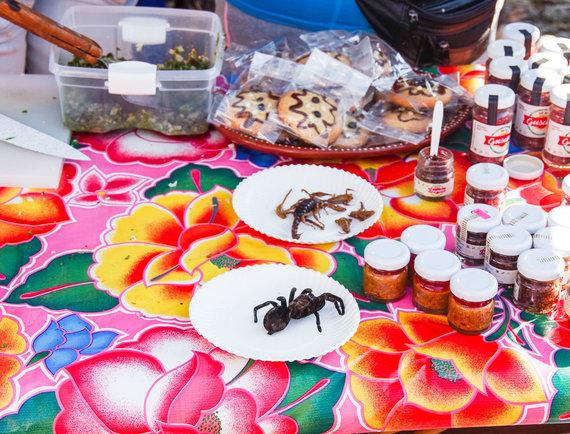 Paul Stewart nuotr./Vabalų ir vabzdžių valgymas Meksikoje