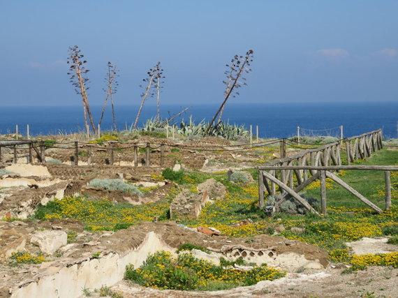 Saulės Paltanavičiūtės nuotr./Romėnų vilų likučiai – saugoma archeologinė zona