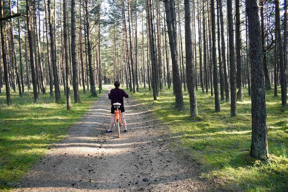"""VšĮ """"Gatvės gyvos""""/Dviračiu Palangos miškais"""
