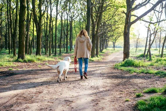 Projekto partnerių nuotr. /Žiedadulkėms alergiškiems asmenims reikėtų vengti kontakto su iš lauko grįžusiais augintiniais