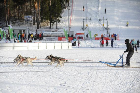 """Alfredo Pliadžio nuotr./""""LTeam"""" žiemos olimpinis festivalis Ignalinoje 2014 m."""