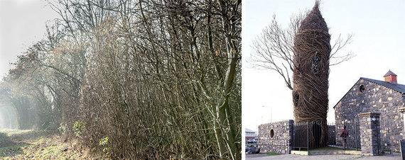 Projekto partnerio nuotr./Šakos / Patrico Dougherty bokštas-medis