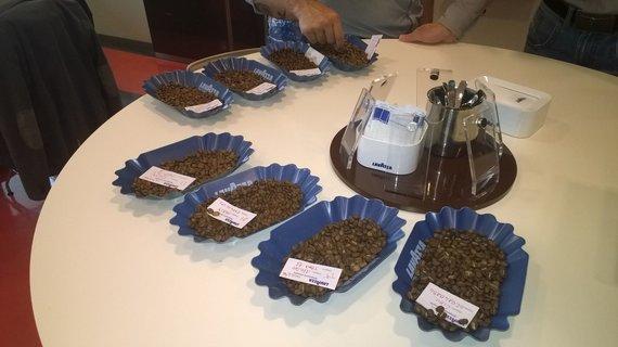 Skirtingų kavos pupelių degustacija
