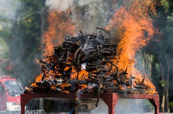 """AFP/""""Scanpix"""" nuotr./Mianmare sudeginta laukinių gyvūnų dalių už 1,3 mln. dolerių"""