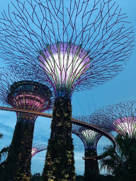 """""""Baltic Tours"""" nuotr./""""Gardens by the Bay"""""""