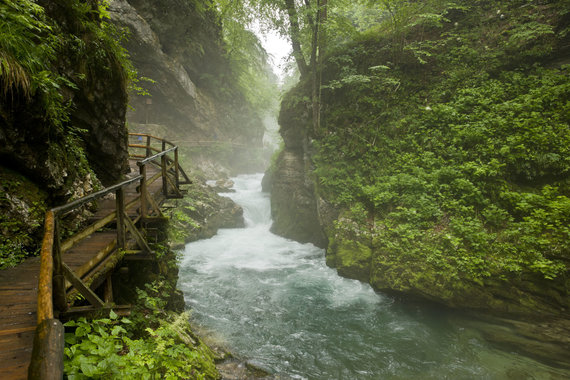 Vida Press nuotr./Triglavo nacionalinis parkas