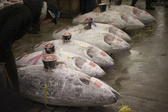 """""""Scanpix""""/AP nuotr./Cukidžio turgaus Naujųjų metų tuno aukcionas"""