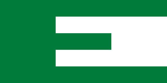 Wikipedia Commons pav./Europos judėjimo vėliava