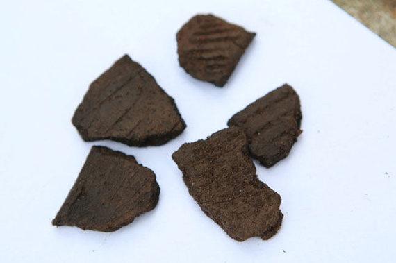 Egidijaus Jankausko nuotr. / Virvelinės keramikos radiniai liudija, kad istorinio Klaipėdos miesto pakraštyje, Vitės priemiestyje, žmonės gyveno jau 2 600 - 1 600 m. pr. Kr.