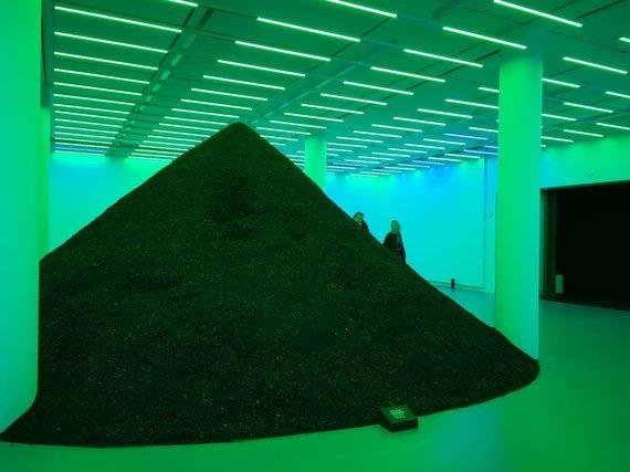 Ilmos Vienažindytės nuotr. /Luizianos meno muziejuje