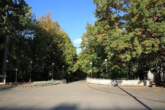 Planuojama tvarkyti Šiaulių centrinio miesto parką