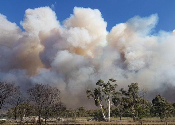 """AFP/""""Scanpix"""" nuotr./Sidnėjaus apylinkėse siaučia didžiulis krūmynų gaisras"""