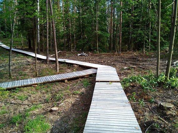 Miško parko mediniai takai