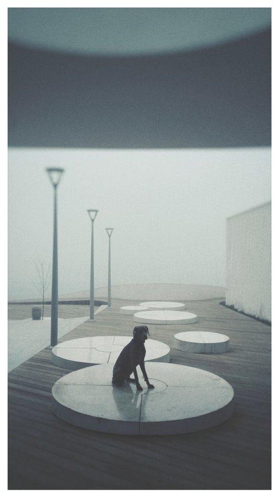"""Emiliobgr nuotr./""""Huawei"""" fotografijos konkurso geriausias darbas kategorijoje """"Check-In"""""""