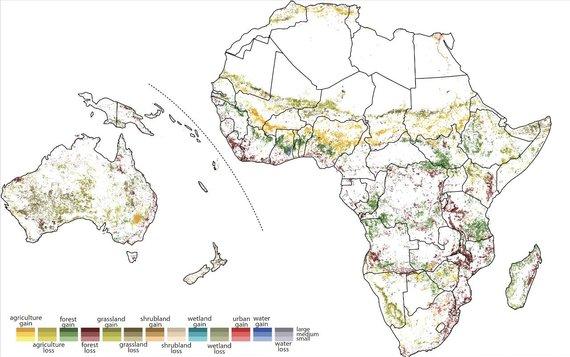 T.Stepinskio iliustr./Pietryčių Afrikos džiunglės taip pat praretėjo