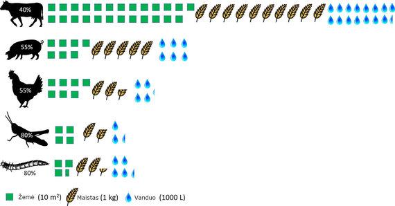 J.Baziuko iliustr./Ištekliai, reikalingi skirtingų rūšių maistui auginti