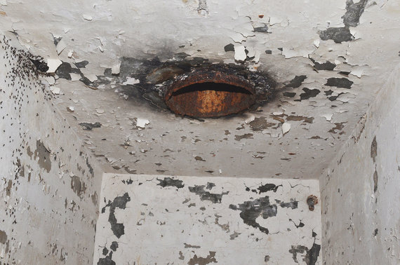 W.Stephano nuotr./Grįžti į šviesą tuo pačiu keliu, kuriuo pateko į bunkerį, skruzdėlės negalėjo