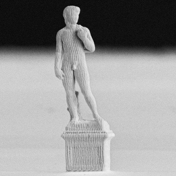 G.Ercolano/ETH nuotr./0,1 mm milimetro aukščio Dovydas
