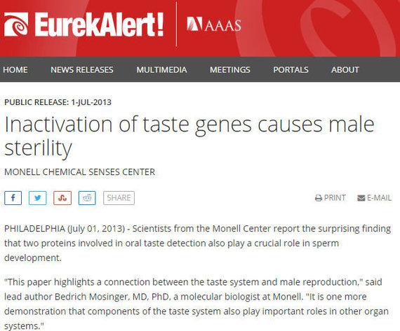 Eurekalert iliustr./Pranešimas spaudai apie skonio receptorius sėklidėse