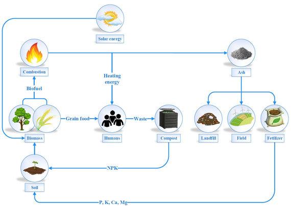 K.Cirtautaitės iliustr./1 pav. Bioenergijos ciklas