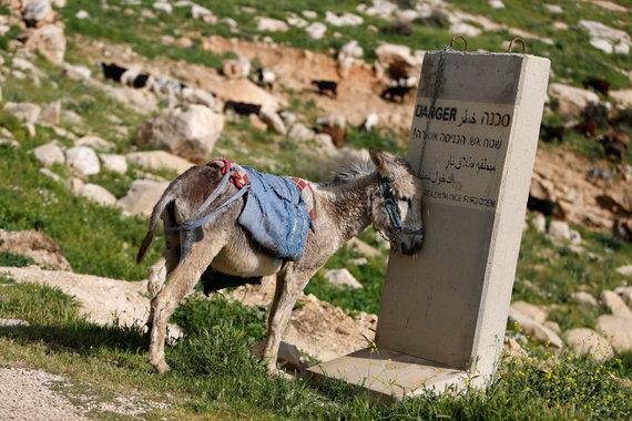 """""""Reuters""""/""""Scanpix"""" nuotr./Jordano slėnis"""