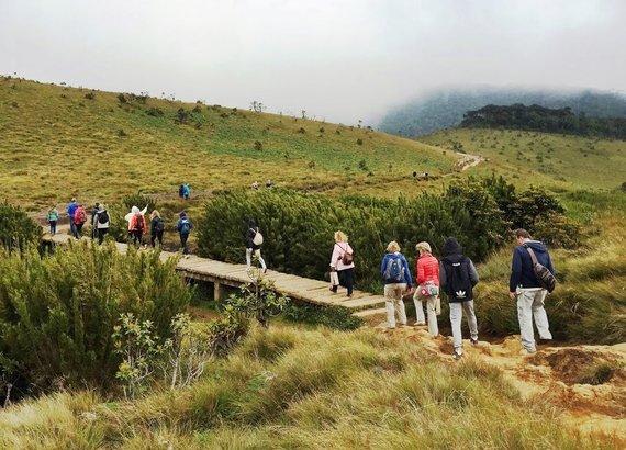 """Kelionių organizatoriaus """"GRŪDA"""" nuotr./Pasivaikščiojimas po Hortono lygumų nacionalinį parką"""