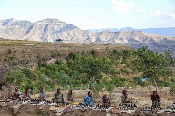 """Kelionių organizatoriaus """"GRŪDA"""" nuotr./Simieno kalnų nacionalinis parkas, Etiopija"""