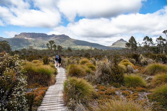 "Shutterstock nuotr./Turistinis žygis ""Overland Track"", Tasmanija"