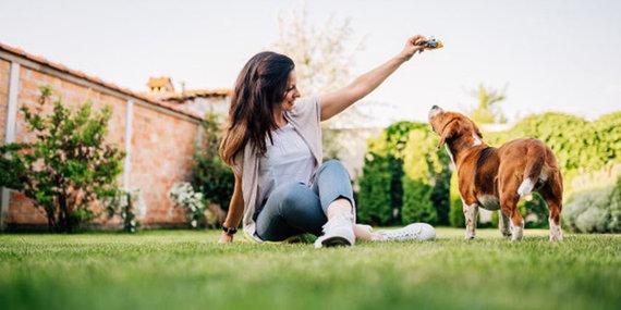 Partnerio nuotr./10 patarimų norintiems įsigyti mažos veislės šunį