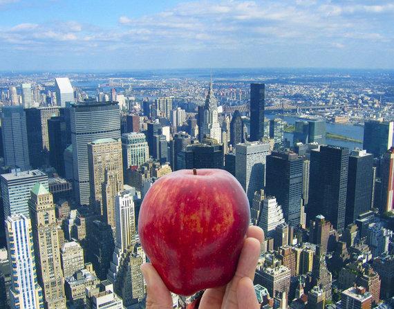 """Kelionių organizatoriaus """"GRŪDA"""" nuotr. /""""Didysis obuolys"""" – Niujorkas"""