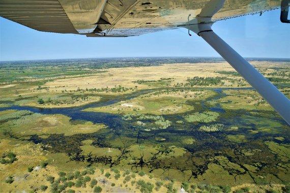 """Kelionių organizatoriaus """"GRŪDA"""" nuotr. /Okavango upės delta"""