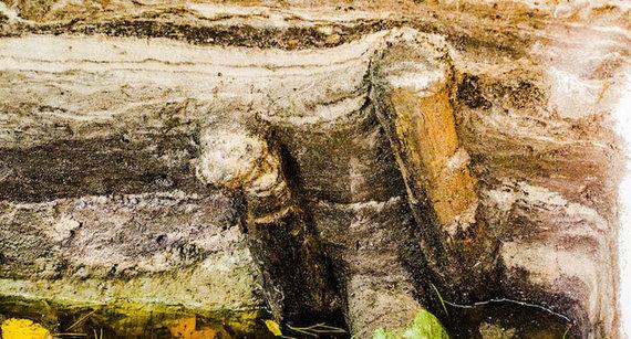 Edvardo Paplauskio nuotr./Archeologų aptikta sienos konstrukcija iš dviejų polių ir rąsto tarp jų